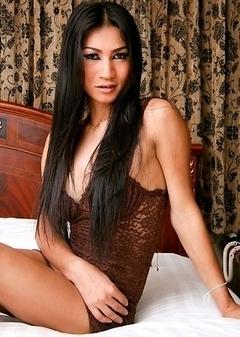 Busty Asian Femboy - Gaeow