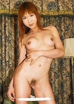 Asian Transsexual New
