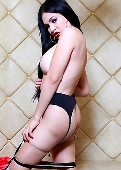 Hottie TS Filipina Wearing Lovely Lingerie And Stockings